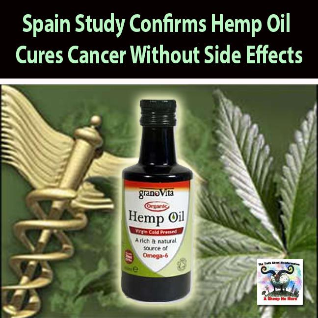 What Does Hemp Seed Oil Do For Your Skin