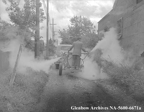 Spraying alleys, Calgary, Alberta. August 1954.   No doubt spraying to eradicate polio which they thought was spread by flies!