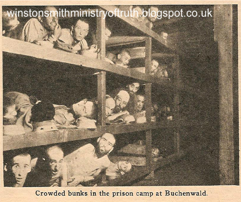 The Holocaust/Holohoax Crowded-at-buchenwald